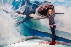 3d graffiti tiburón