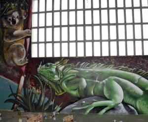 mural-iguana-y-koala