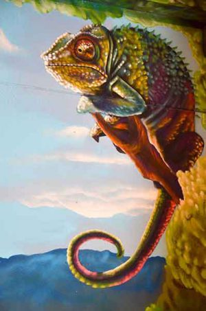 mural-camaleon