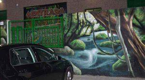 graffiti-fachada-cascada