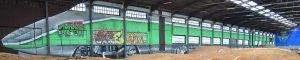 graffiti-tren-pintado