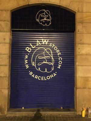 rotulacion-persiana-blaw-store