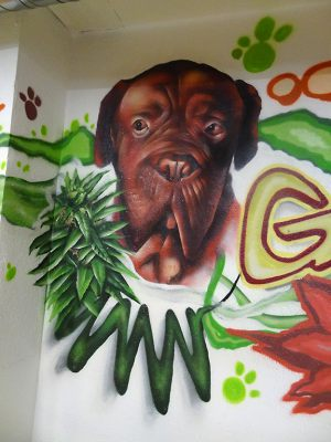 graffiti-perro-cannabis