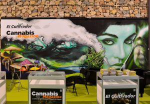 Decoracion-graffiti-pintura-mural-cannabis-evento