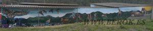 graffiti aguila lobos naturaleza paisaje