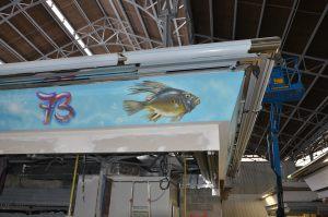 mural-pescado